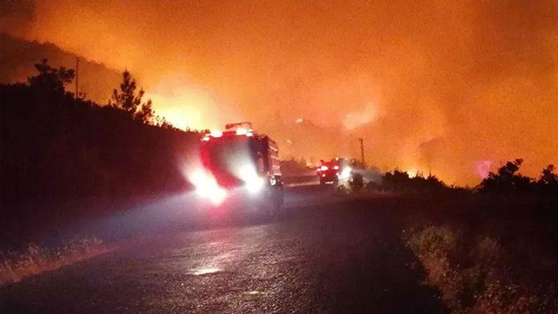 Orman yangınlarında son durum! Bakanlar ardı ardına açıklama yaptı