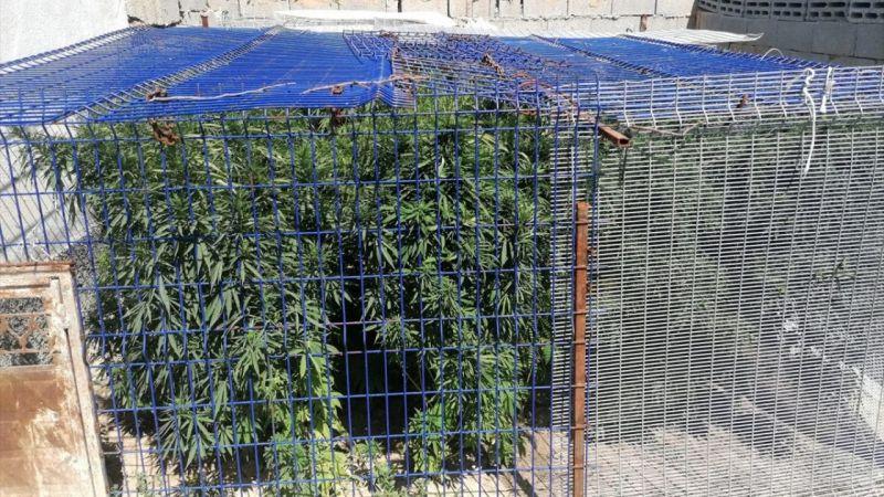 Uyuşturucu operasyonlarında 20 şüpheli gözaltına alındı