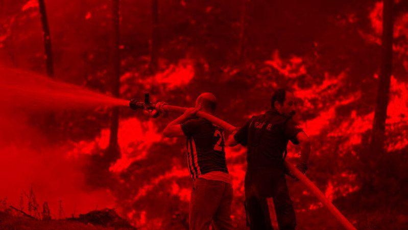 Son dakika! Alanya'da orman yangını