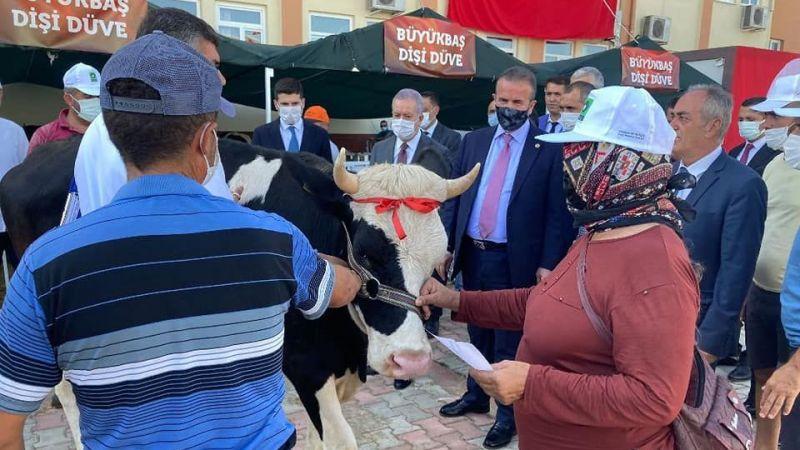 Ereğli'den çıkan hayvanlar Afet Bölgesi'nde Vatandaşlara Teslim Edildi