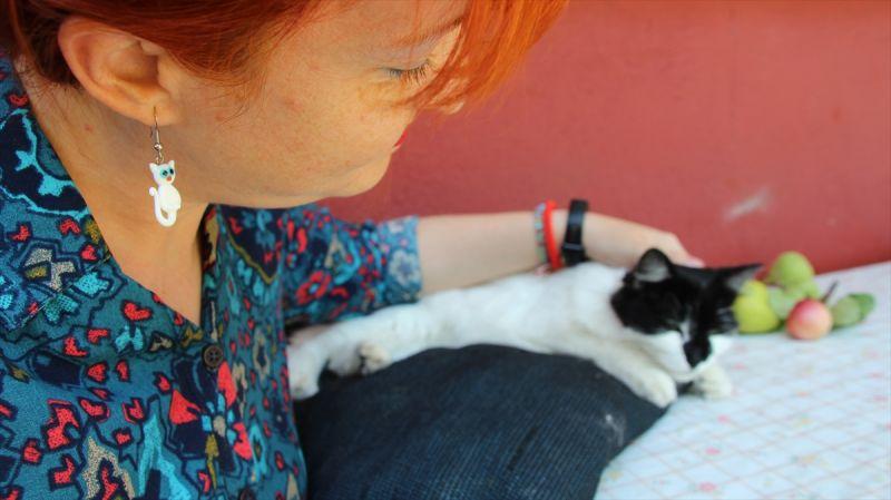Sokak hayvanlarının iyilik meleği Hitabe öğretmen
