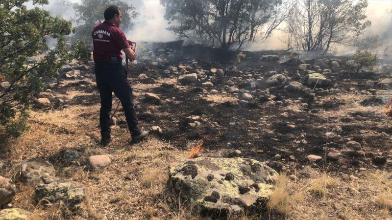 Seydişehir'de çıkan orman yangını itfaiye ekiplerince kontrol altına alındı