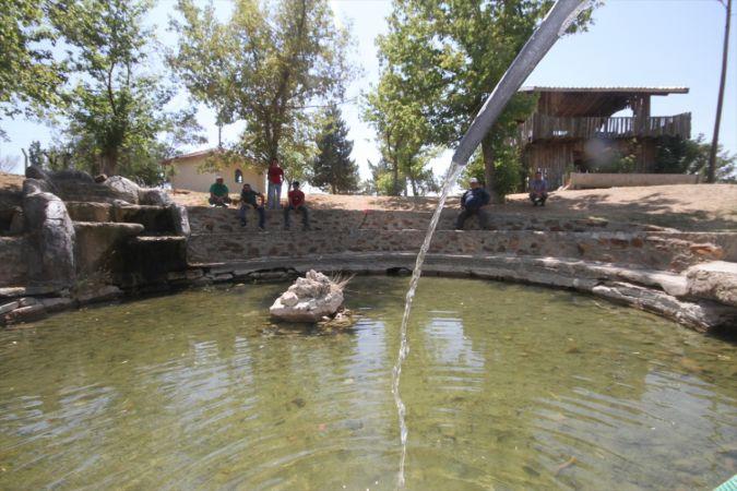 """Konya'daki Balıklıpınar kuraklık nedeniyle kurumaya yüz tutunca, """"efsanevi"""" balıkları da tehlikeye girdi"""