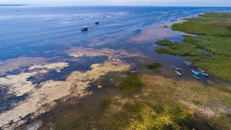 Beyşehir Gölü için korkutan açıklama: 'Önceden can çekişiyordu, şu anda ölme derecesine geldi'