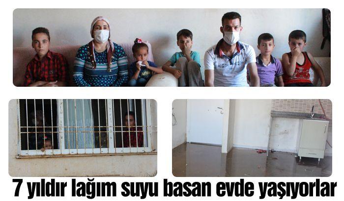 6 çocuklu aile 7 yıldır lağım suyu basan evde yaşıyor