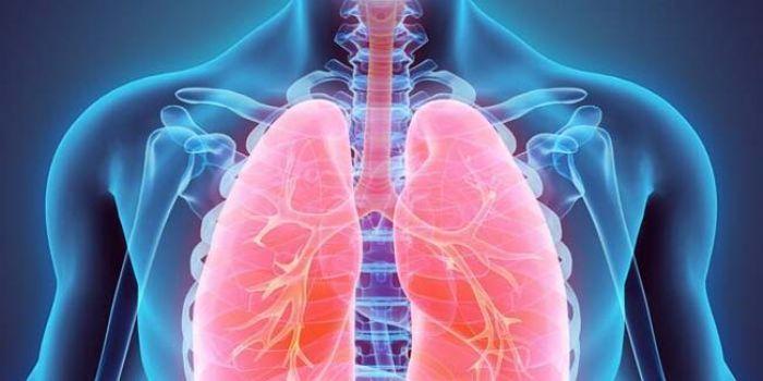 Akciğer kanseri ile ilgili merak edilenler