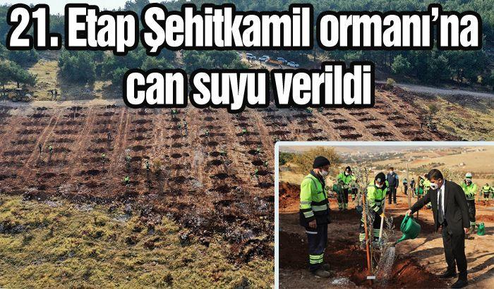 21. Etap Şehitkamil ormanı'na can suyu verildi