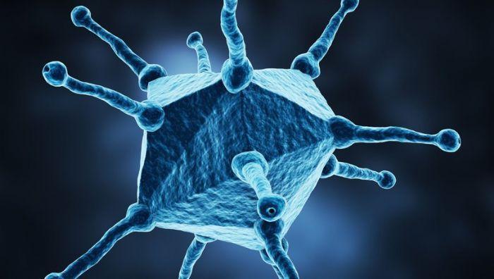 Adenovirüs koronavirüs (Covid-19) kadar hızlı yayılabiliyor