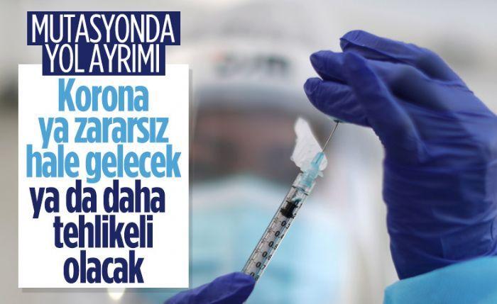 Prof. Mehmet Ceyhan: Mutasyonda yol ayrımındayız