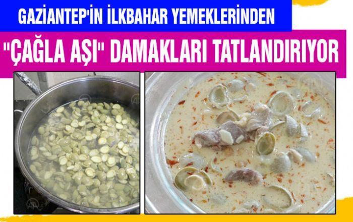 Gaziantep'in ilkbahar yemeklerinden çağla aşı damakları tatlandırıyor