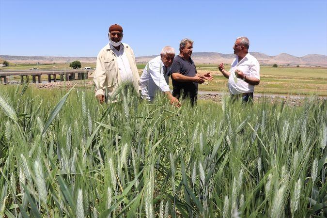 Araban Ziraat Odası Başkanı Altun tarım işçilerini ziyaret etti
