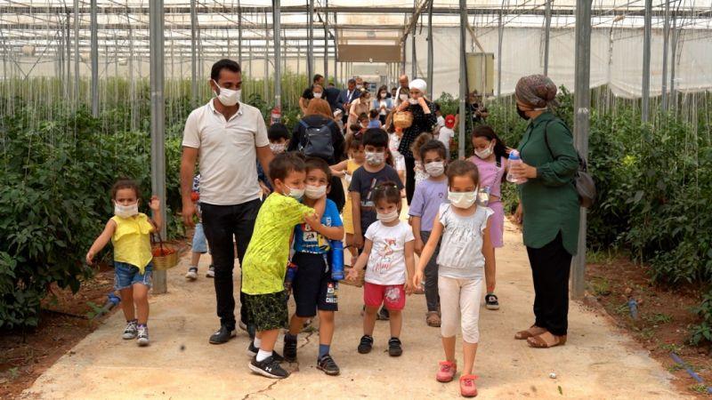 Gaziantepli çocuklar sebze hasadı yaptı