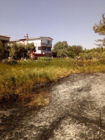 Söke Yenidoğan'da yangın