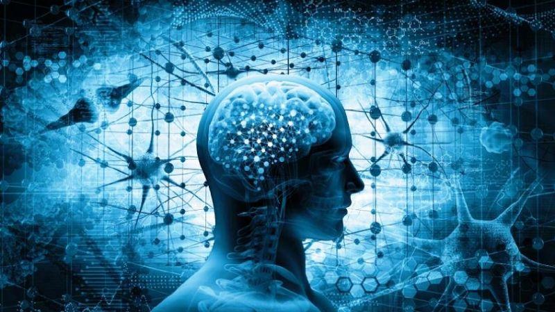 Mücahit Gültekin hazırladı: Yapay zeka ve biyoteknolojiye ilişkin 30 kitap (Tanıtım)