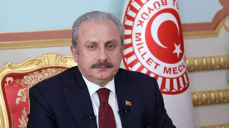Şentop, Gergerlioğlu'na yaka paça gözaltıyı savundu: Gereği yapıldı