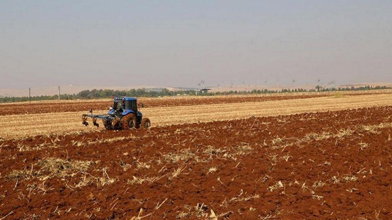 Bölgedeki oda başkanları uyardı: Güneydoğu'daki kuraklık tarımı vurdu, kimi ürünlerde fahiş fiyat artışı olacak
