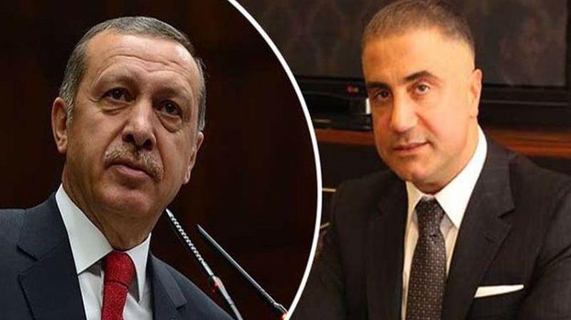 Erdoğan'dan Sedat Peker değerlendirmesi