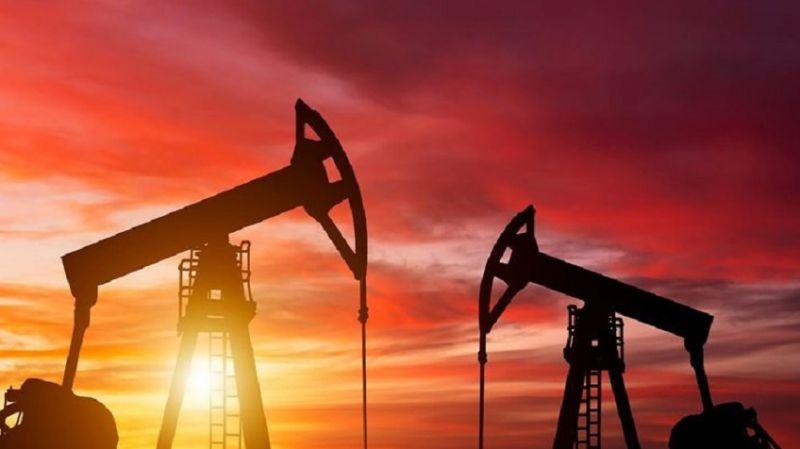 Erdoğan: Üç kuyuda petrol keşfettik