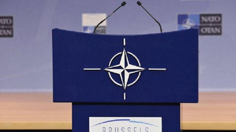Ukrayna: NATO'ya katılıyoruz