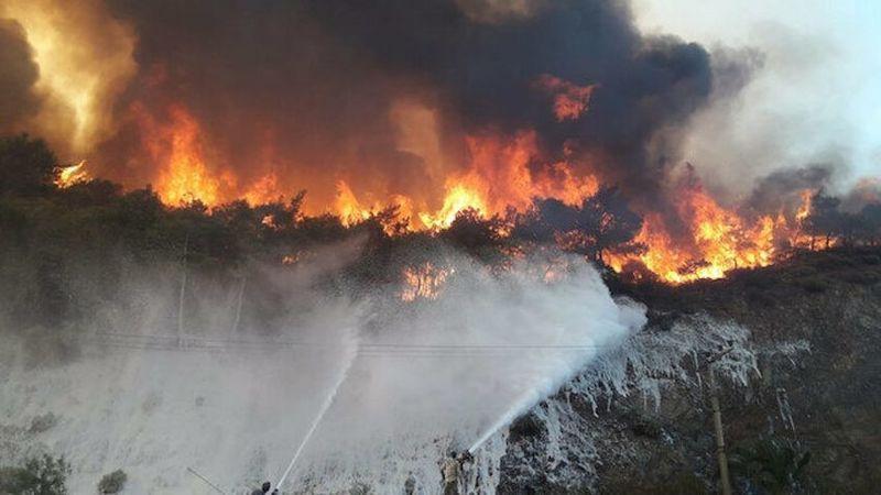 Yangınlardan etkilenen alanlar afet bölgesi ilan edildi