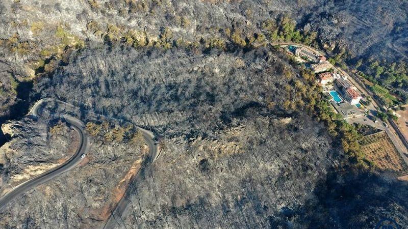 Yangından etkilenen yaban hayvanları için özel ekip