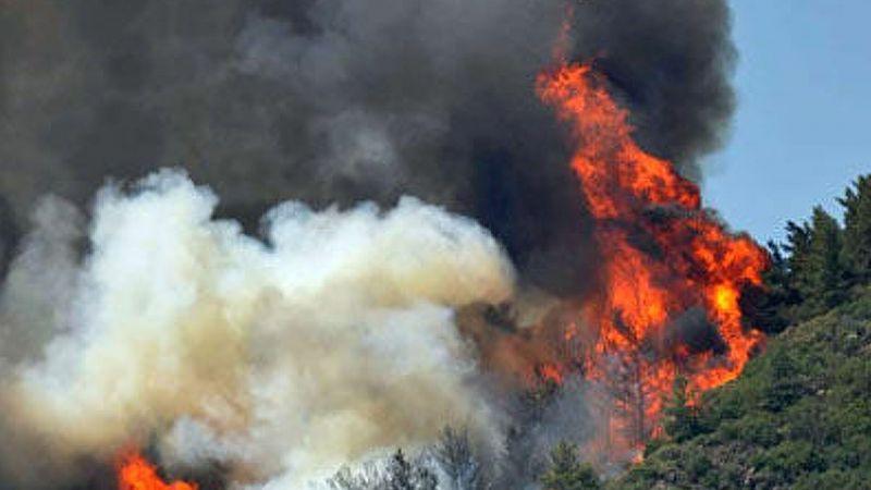 Muğla'da ormanlık alanlara görevlilerdışındakilerin girmesi 1 Ekim'e kadar uzatıldı