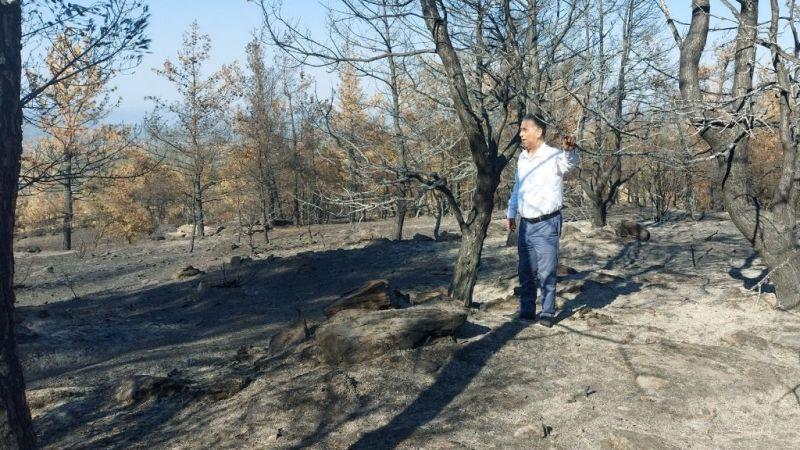 CHP'li Özcan'danorman yangınları ile ilgili41 soru