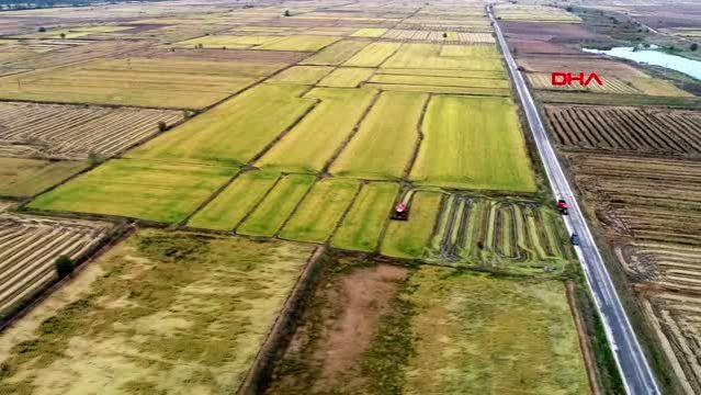 Edirne'de Buğday Hasadında Sona Gelindi