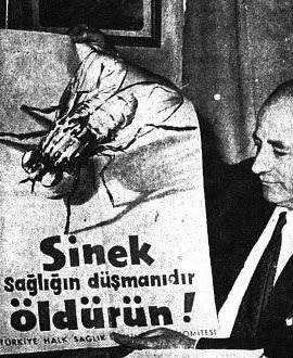 Toplu Sinek Avı, İstanbul Tarihinin En Absürt Vakası!