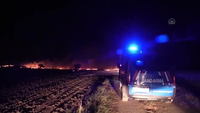 Edirne'de Çıkan Anız Yangınları Ayçiçek Ekili Tarlaya Sıçradı
