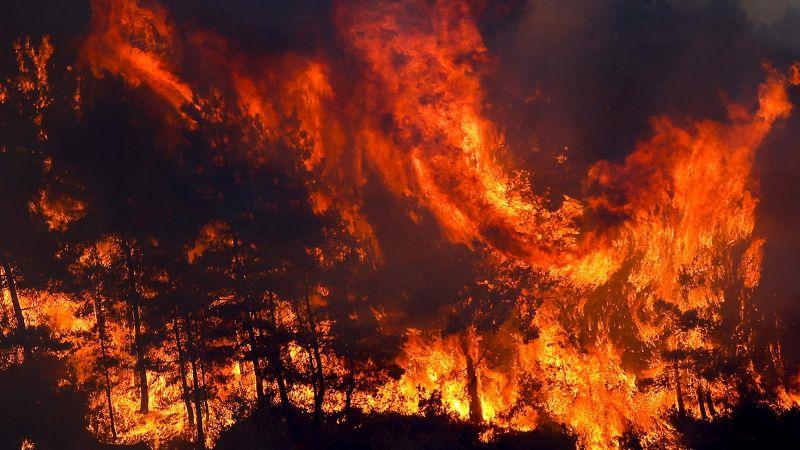 Manavgat'taki Orman Yangınına Müdahaleler Devam Ediyor