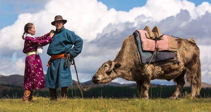 Japonya Moğolistan'a 8 Milyon Dolar Aşı Desteği Sağlayacak