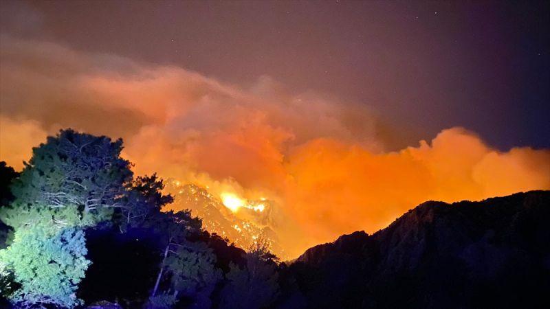 Alanya'daki Orman Yangınlarıyla Mücadele Devam Ediyor! Yangınlar Tekrar Başladı