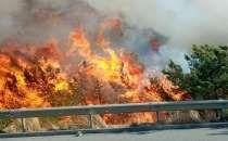 Bodrum'da  Orman Yangınları Söndürülmeye Çalışılıyor