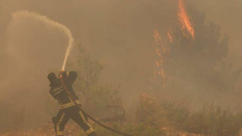 Yangının Bir çok alana sıçramasının sebeplerinden biri olan ''Kozalak ve etkisi''.