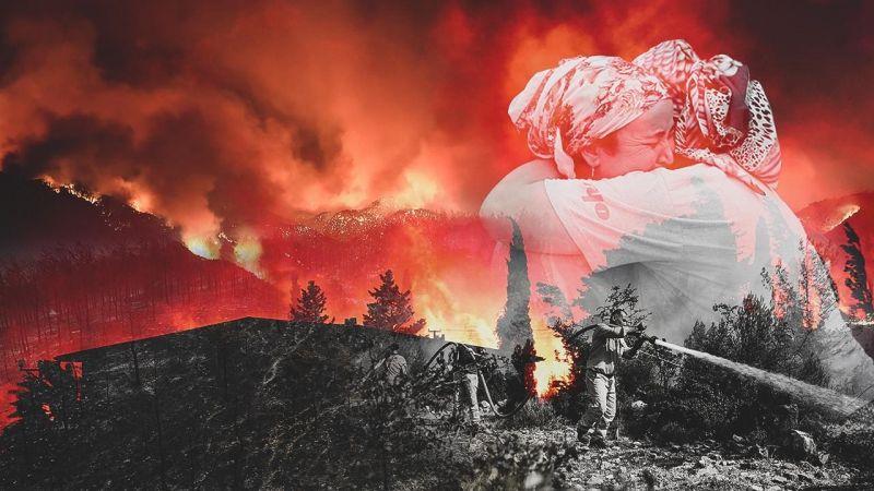 Milas, Bodrum ve Kavaklıdere'deki Orman Yangınlarına Müdahale Devam Ediyor