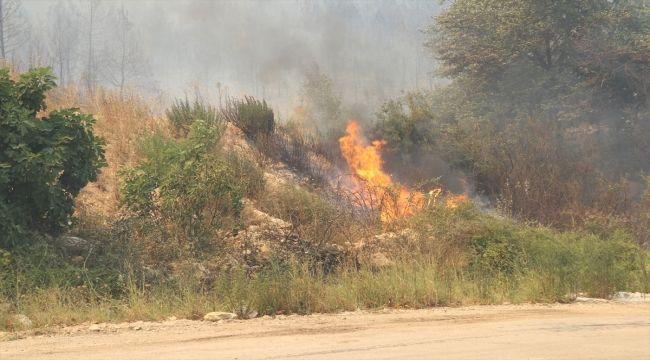 Isparta'da Çıkan Yangına Müdahale Ediliyor!