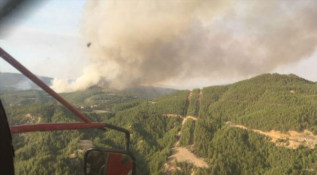 Muğla'nın Menteşe İlçesinde Yangın Çıktı! Ormana Müdahale Ediliyor