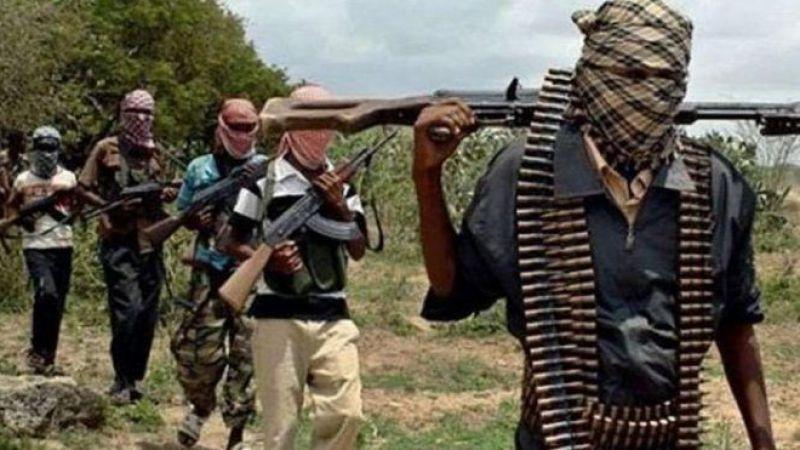 Nijerya'da Kaçırılan Çocukların Teslimi İçin 2,4 Milyon Dolar Fidye Ödendi