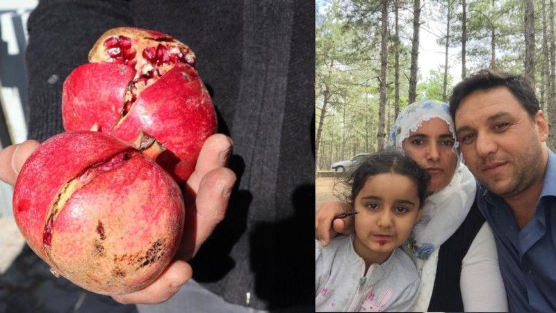 Nar'a Sıkılan Tarım İlacından Kaynaklı 4 Yaşındaki Saliha Hayata Veda Etmişti! Adli Tıp Kurumundan Haber Geldi