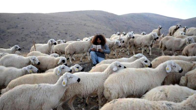 Üniversite Mezunu Duran'ın Çobanlık Serüveni