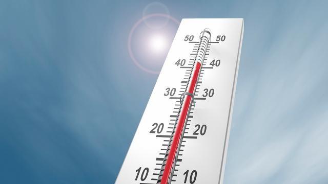 Japonya'da aşırı sıcaklar nedeniyle 23 kişi hayatını kaybetti