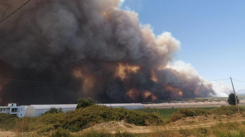Manavgat'ta Büyük Orman Yangını: Müdahale Devam Ediyor!