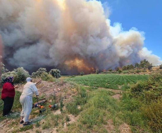 Antalya'da Orman Yangını: Saatler Sonra Kontrol Altına Alındı!