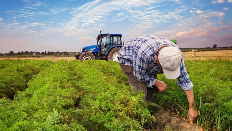 Danıştay'dan çiftçiye müjde! Milyarlık vergi iptal edildi