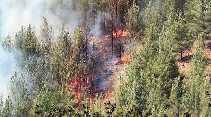 Kayseri'den Yüreklere Su Serpen Haber: Yangın Kontrol Altına Alındı!