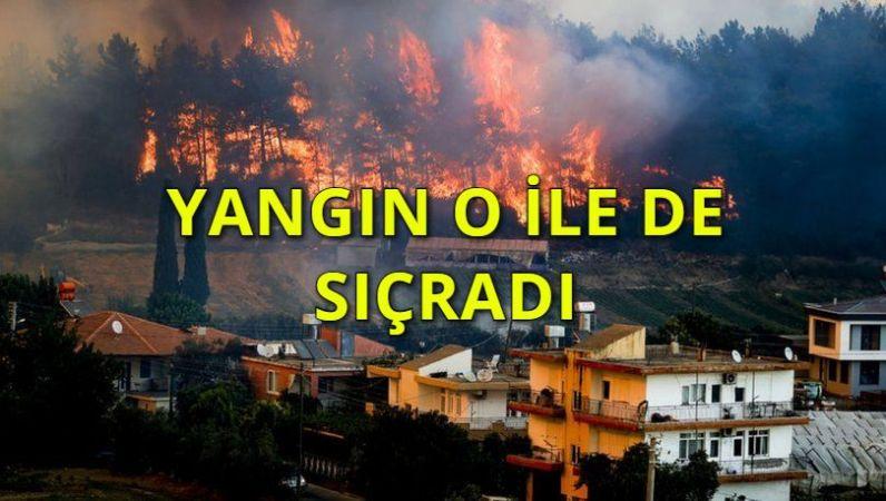 Mücadele devam ederken yangın bir ilimize daha sıçradı