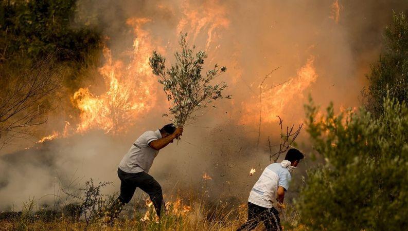 Yangınla mücadelede fırsatçılar yine devrede