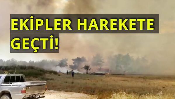 Manavgat'tan Korkutan Bir Haber Daha! Sarılar Mahallesi Yanıyor!