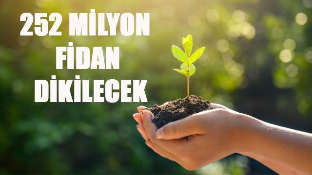 Bakan Pakdemirli açıkladı! 'Yıl bitmeden 252 milyon fidan dikilecek'